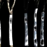 문창환 <더 커다란 폭력(부분)>, 2020, 4채널 영상, 7분, 광주시립미술관 자료